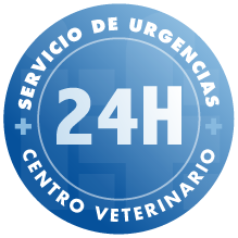 logo-24-horas-if